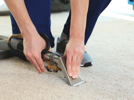 Dry-right-carpet-cleaning