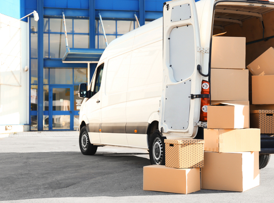 Don't Let Moving Cause a Miniture Meltdown – Mini Removals