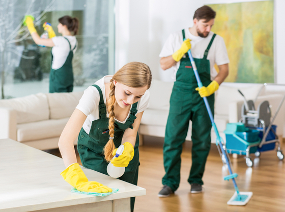 The Hidden Benefits of Cleaning – Crina's Cleaning Team