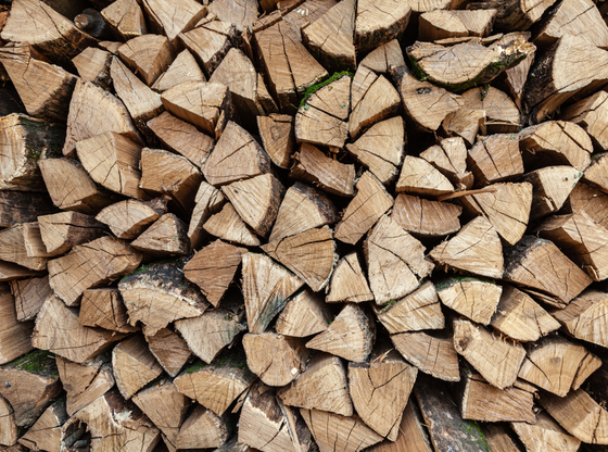 The Benefits of Dried Hardwood Logs – Shaw Firewood